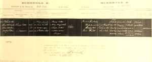 Dr Cotter's death certificate