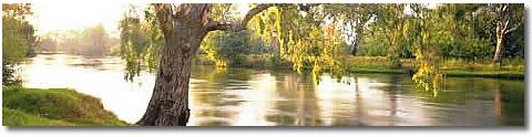 murray river albury